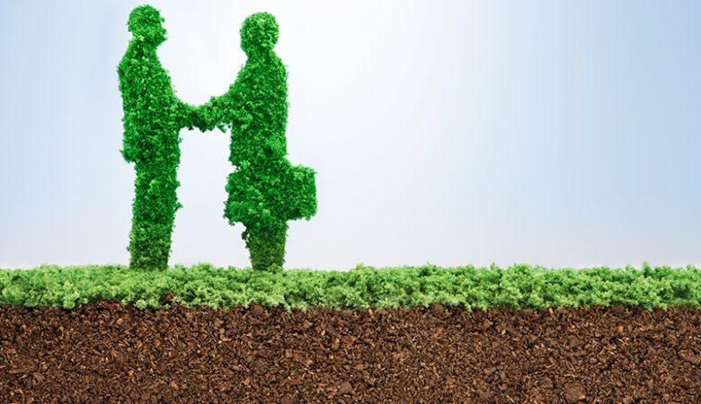 Tips for Greening your Meeting